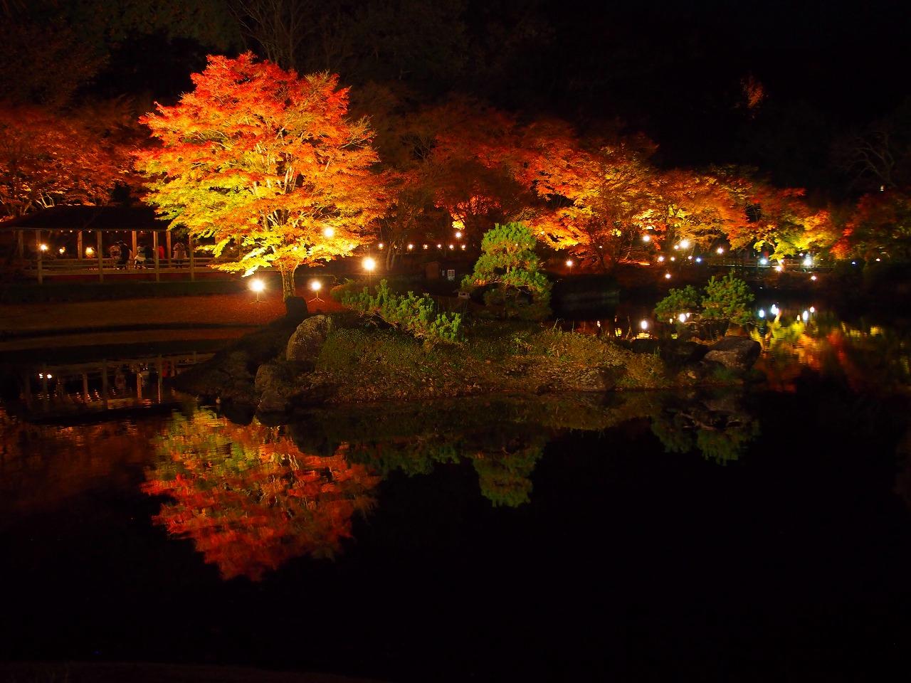 虹の郷_紅葉ライトアップ_日本庭園