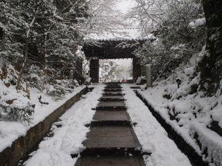 雪の高台寺 台所坂