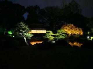 庭園ライトアップ
